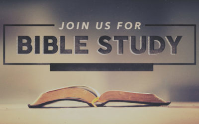 Online Bible Study Opportunities